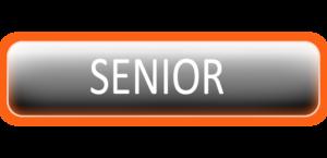 Campeonato Senior